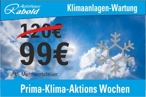 Sommer-Aktion, Klimaanlagen-Wartung 99,-€ inkl. Desinfektion und Pollen-filter
